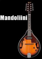 Mandoliini kielet