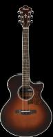 Ibanez AE205-BS