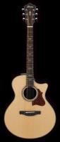 Ibanez AE500NT