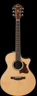 Ibanez AE900NT