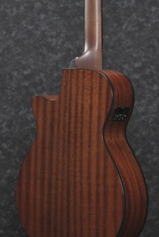 AEG50N-BKH-ibanez-Body-Back.