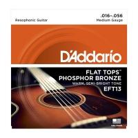 Daddario 016-056 Flat Tops EFT13