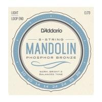 Daddario 010-038 mandoliinille EJ73
