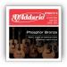 Daddario EPBB170-5 akustisen basson kielisarja 045-130