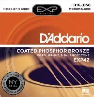 Daddario EXP42 Resophonic