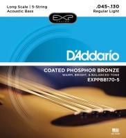 Daddario EXPPBB170-5 Acoustic Bass