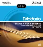 Daddario EXPPBB170 Acoustic Bass