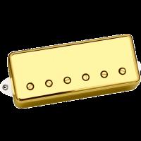 DiMarzio Notorious minibucker kultaisilla kuorilla.