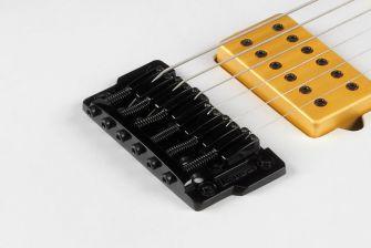 Jake Bowen -kitaran Gibraltar Standard II -kiinteä talla.