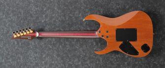 Ibanez JCRG2103LBT kitara takaa.