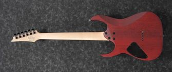 Ibanez RG421PB-CHF kitara takaa.