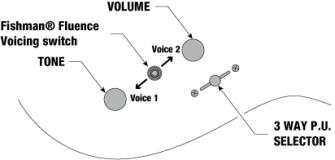 Kontrollit: volume, tone, 3-asentoinen mikrofonikytkin ja fishman fluence moodikytkin.